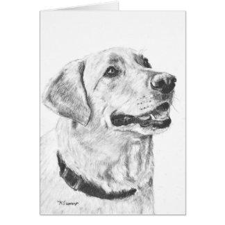 Labrador Retriever Drawing Card