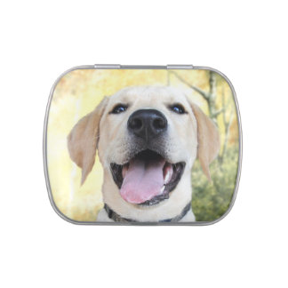 Labrador retriever feliz jarrones de caramelos