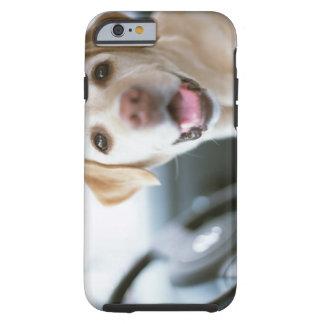 Labrador retriever funda de iPhone 6 tough