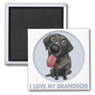 Labrador retriever Granddog (negro) Imán Cuadrado