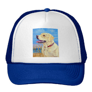 Labrador Retriever Hats