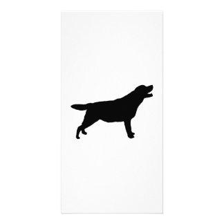 Labrador Retriever hunting dog Silhouette Card