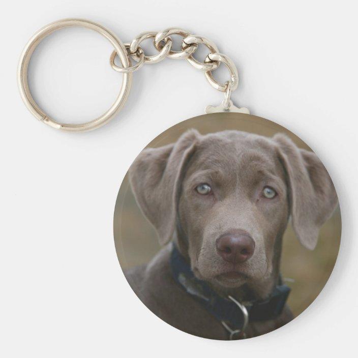 Labrador Silver Keyring