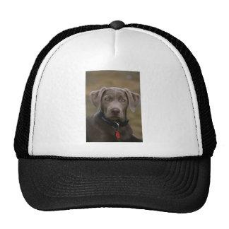 Labrador Retriever In Rare Light Silver Trucker Hat
