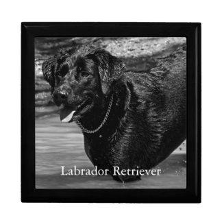 Labrador Retriever in Water Keepsake Box