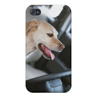 Labrador retriever iPhone 4/4S fundas