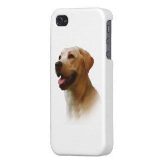 Labrador retriever iPhone 4 cárcasas