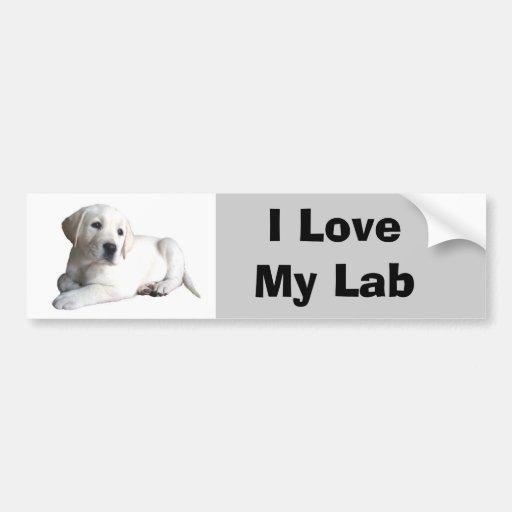 Labrador Retriever Love Bumper Sticker Car Bumper Sticker