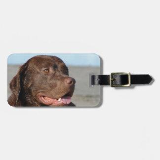 Labrador Retriever Luggage Tag