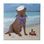 Labrador retriever marrón azulejo