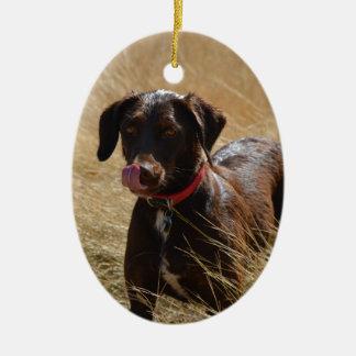 Labrador retriever marrón adorno ovalado de cerámica