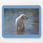 Labrador Retriever Mousepad At The Lake