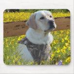 Labrador Retriever Mousepad Fence