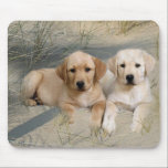 """Labrador Retriever Mousepad Puppies<br><div class=""""desc"""">Labs are the #1 dog breed in the United States and when you look at this puppy, you know why immediately. Labs can be Yellow, Black or Chocolate, but all three colors share the same wonderful traits. Labs are great family and hunting dogs along with being fantastic service dogs for...</div>"""