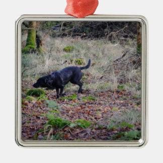 Labrador retriever negro adorno cuadrado plateado