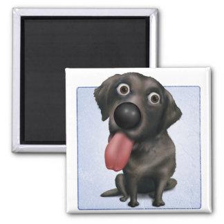 Labrador retriever (negro) imán cuadrado