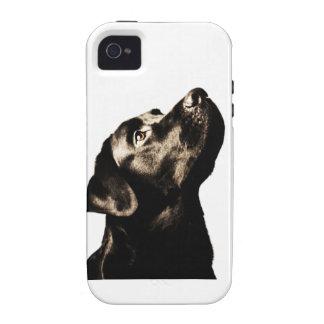 Labrador retriever negro impresionante Case-Mate iPhone 4 funda