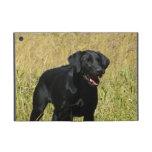 Labrador retriever negro iPad mini cárcasa