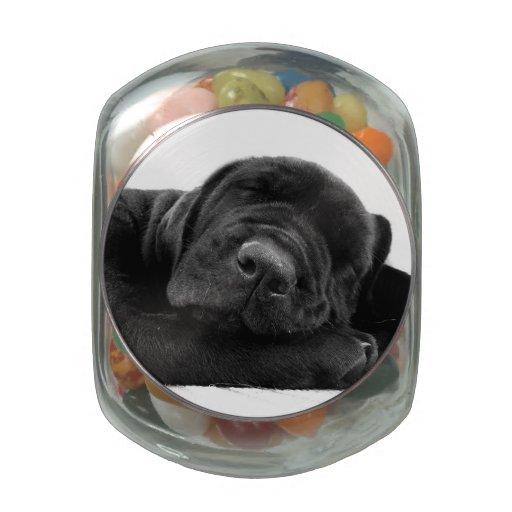 Labrador retriever negro jarras de cristal