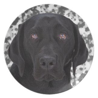 Labrador retriever negro platos de comidas