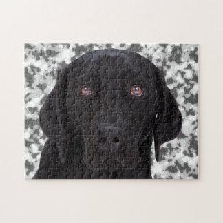 Labrador retriever negro rompecabezas con fotos