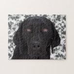 Labrador retriever negro puzzle con fotos