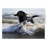 Labrador retriever negro que corre a través de la tarjeta de felicitación