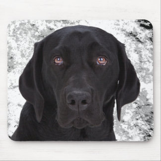 Labrador retriever negro alfombrilla de ratón