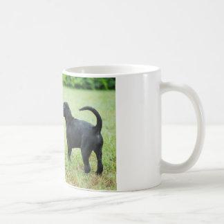 Labrador retriever negro taza de café