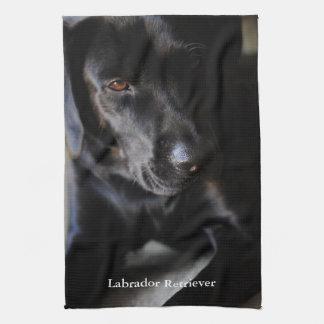 Labrador retriever negro toallas de mano