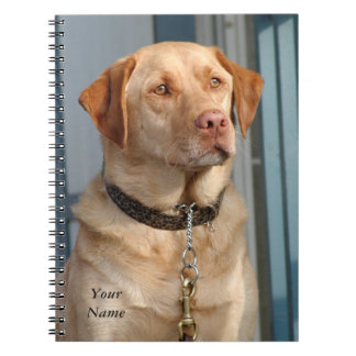 Labrador Retriever Notebook