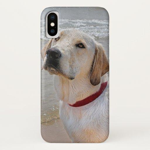 Labrador retriever on beach iPhone XS case