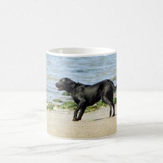 Labrador retriever on beach coffee mug