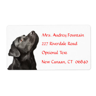 Labrador Retriever Personalized Name Address Label