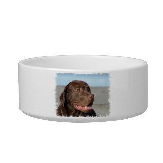 Labrador Retriever Pet Bowl