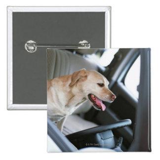 Labrador retriever pin