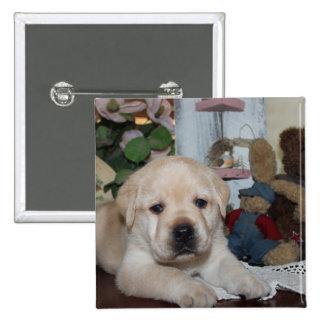 Labrador retriever pin cuadrado