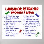 LABRADOR RETRIEVER PL2 POSTERS