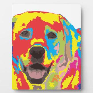 Labrador retriever plaque