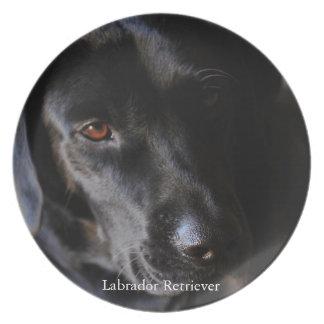 Labrador Retriever Dinner Plates