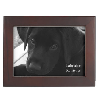 Labrador Retriever Pup Keepsake Boxes