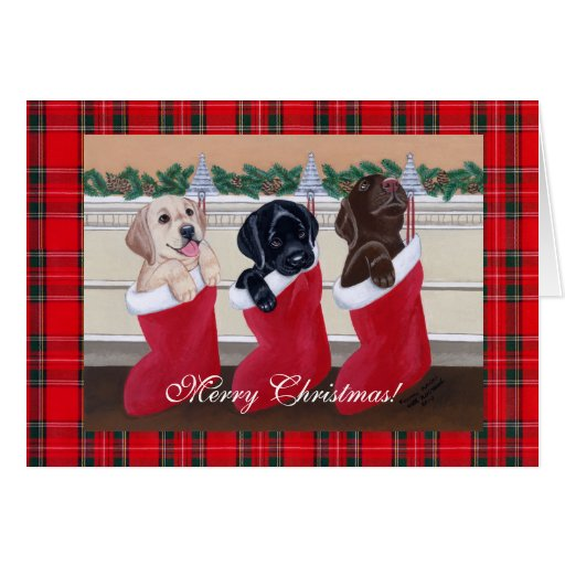 Labrador Retriever Puppies Christmas Cards