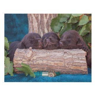 Labrador Retriever Puppies Panel Wall Art