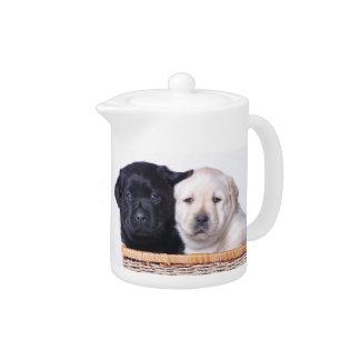 Labrador retriever puppies teapot
