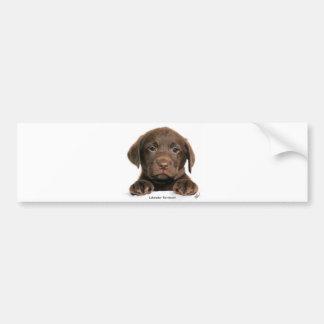 Labrador Retriever puppy 9Y270D-050 Car Bumper Sticker