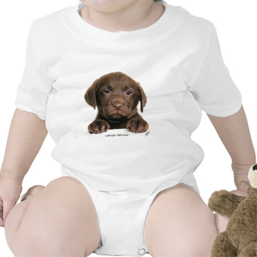 Labrador Retriever puppy 9Y270D-050 Tee Shirt