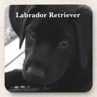 Labrador Retriever Puppy Coaster