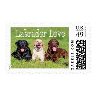 Labrador Retriever Puppy Dog Black, Brown & Yellow Postage Stamp