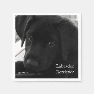 Labrador Retriever Puppy Paper Napkin