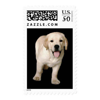 Labrador Retriever Puppy Postage Stamp